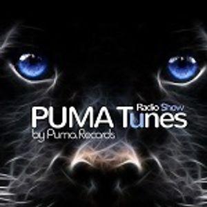 Puma Tunes— Radio Show (3)