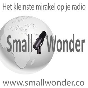 Small Wonder week 28 2017
