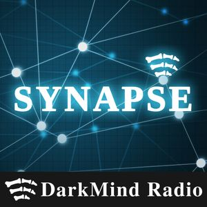 The Return of the Synapse – SYN008