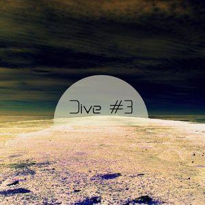 Dive #3 (January 2013)