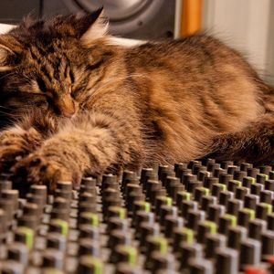 My cat is on the mixer #25 (Rush To The Moon)