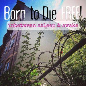 B2DF #29: inbetween asleep & awake