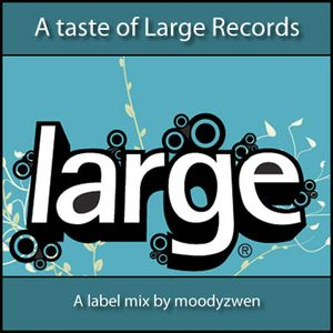 A Taste of Large Records - mixed by Moodyzwen
