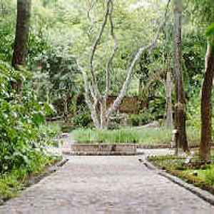 Jardín Etnobotánico 01