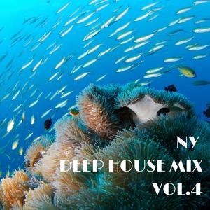 【DeepHouse】DJ KICK NY DEEP HOUSE MIX VOL.4