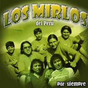 Dj Mauricio Fernández - Megamix Los Mirlos Del Perú