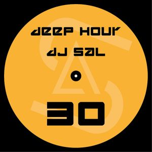 dj sal deephouse mix 2016 vol.30