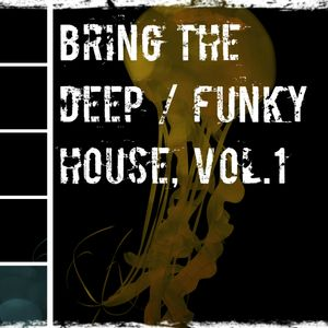 Bring The Deep / Funky House. Vol.1