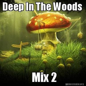 Deep In The Woods Mix 2 (Techno / Tech House Mix)
