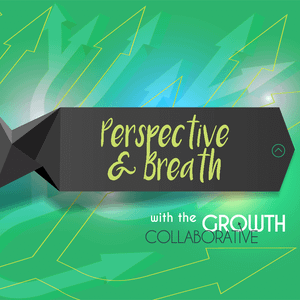 Perspective and Breath - Entrepreneurs Are Juvenile Delinquents - May 24, 2016
