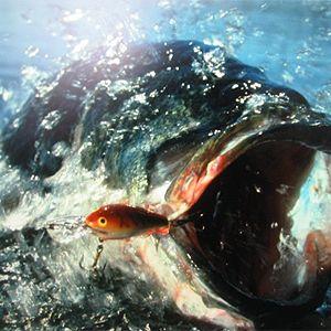 Fishing For Bass (Waterside Mix)