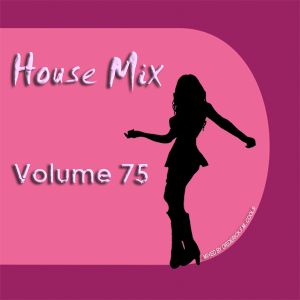 DFMC House Mix Volume 75