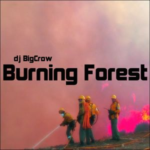 Dj BigCrow - Burning Forest