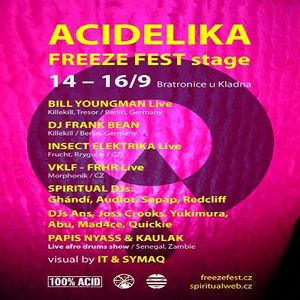 Dj Abu @ Acidelika - Freeze Fest Stage - Industrie Areal Region Prag- 14.09.2012