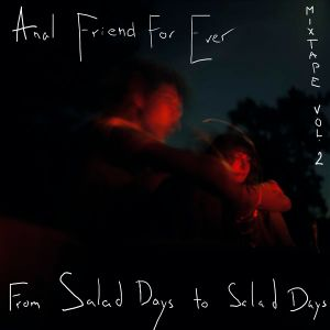 Vol.2 From Salad Days To Salad Days