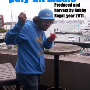 Electronic poly-bit music 2011 producer Robby Royal,getting fresh and full of well being.