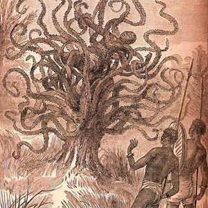 Expl0510: Der menschenfressende Baum