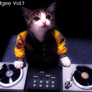 DJ Beatgee Vol.7