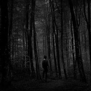 "Into The Dark - by ""The Tempo"""