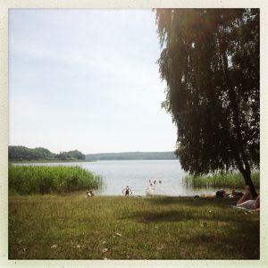 ggut 's summerset