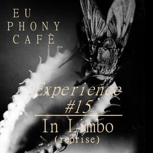 Experience #15: In Limbo (reprise)