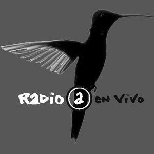 colibries al atake 10-9-14