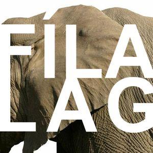 Fílalag - The Letter