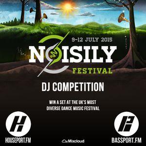Noisily Festival 2015 DJ Competition – DJ Sammy Venken