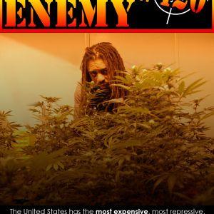 Public Enemy 420