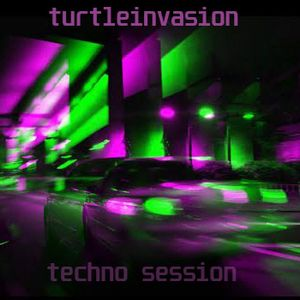 Turtle Invasion - January 28 2017  - Techno Session