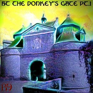 Bearded Electronics : At the donkey's gate pt.1 (full E.P.)