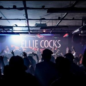 Ellie Cocks | 29th April 2017