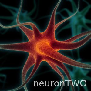 neuronTWO