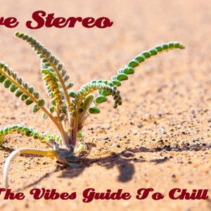 Steve Stereo - The Vibes Guide To Chill 2013