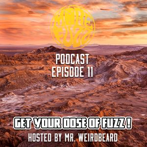 More Fuzz Podcast - Episode 11