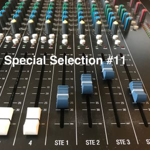 Special Selection #11