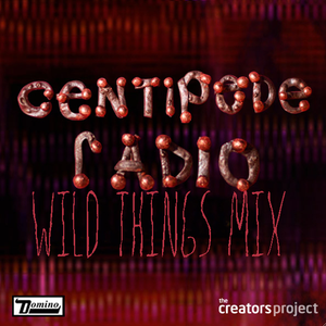 Wild Things: Centipede Radio