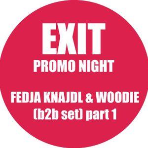 Fedja Knajdl & Woodie b2b (Exit Promo) part 1