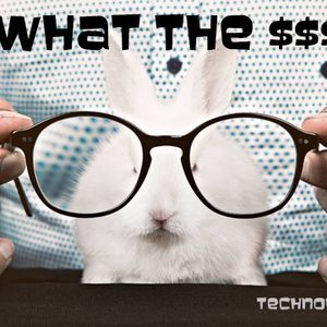 TechnoholiK - What The $$$