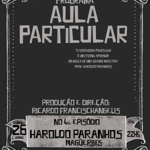 AULA PARTICULAR EP4 - HAROLDO PARANHOS (MAGÜERBES)