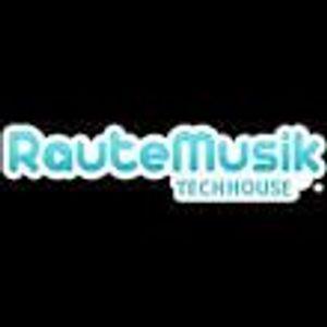Flocalis - Night Beats [Live @ RauteMusik TechHouse] Part1  (05.05.2016)