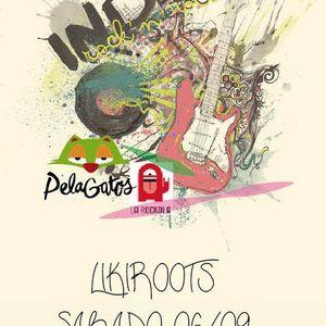 LikiRoots 06/septiembre/2014 - Indie Rock - Dany Riaño en vivo