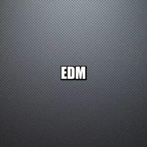 DJ NIKO PROMO MIX  EDM
