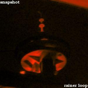 rainer loop - snapshot