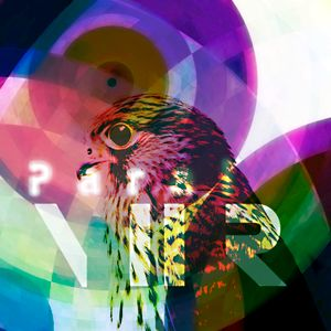 Night Hawk Radio 008