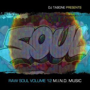 Raw Soul Vol. 12 (Bonus Set) - Dj Tabone Live @ The Harlem Bar ATL