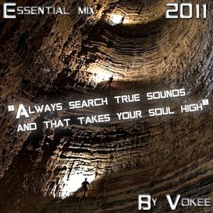 Essential mix 2011 (Vokee Rhythm)