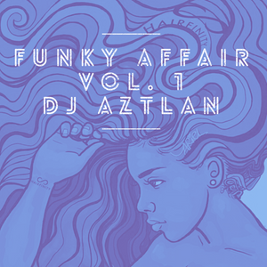 Funky Affair Vol. 1