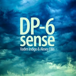 DP-6 - Sense