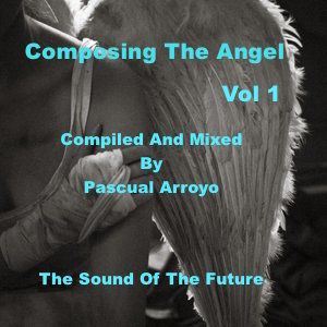 COMPOSING THE ANGEL - VOL 1